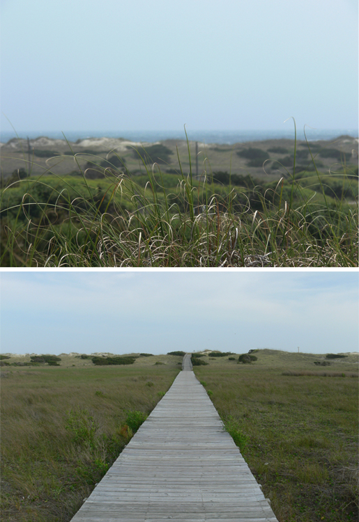 View from Campsite & Boardwalk to Beach
