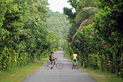 (justdoitdumbass) Tags: nature bike bicycle batanes