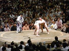 日馬富士 画像67
