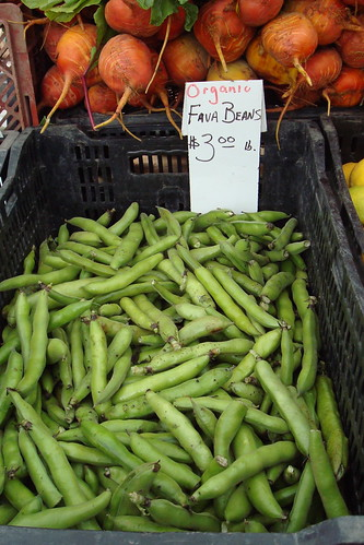 Favas at Hollywood