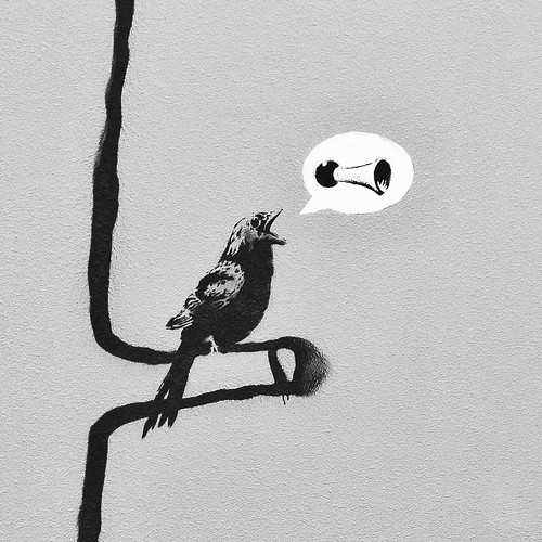 This Little Banksy Bird Can Sing