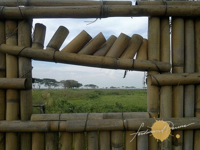 Candaba Bird Hide View
