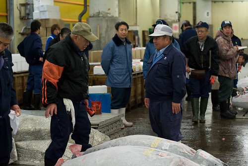 Tuna buyers