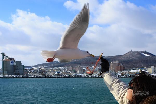 2009北海道-D4-3-破冰船GARINKOⅡ_49.jpg