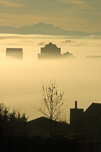 Foggy morning in Coquitlam, BC