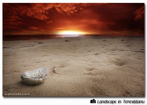 beach at dawn picture