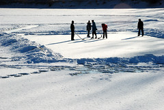 Sur la rivire gele (anjoudiscus) Tags: ice hockey backlight montral hiver ange 2009 contrejour jeu fvrier patinoire scne photosmiles supershot vr18200 riviredesprairies d80 platinumphoto parcdeliledelavisitation