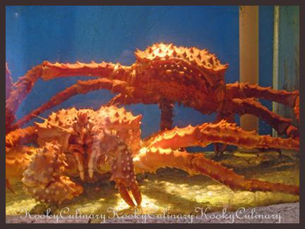 King Crab 1