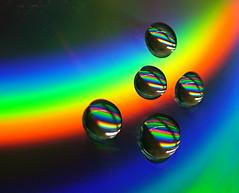 Rainbow  Raindrops (jo92photos) Tags: macro water reflections dvd rainbow spectrum s7000 waterdrops waterdroplets allrightsreserved jo92 jo92photos