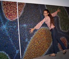 Cuadro (fernanda jaton) Tags: art arte mosaic mosaico pixel venecitas marinosantamaria fernandajaton
