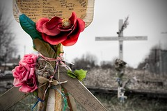 Remembering... (Michel Filion) Tags: flower canon cutout shrine track cross accident outdoor text qubec michel remembering filion stconstant 40d tamronspaf1750mmf28xrdiiildasphericalif mike9alive michelfilion