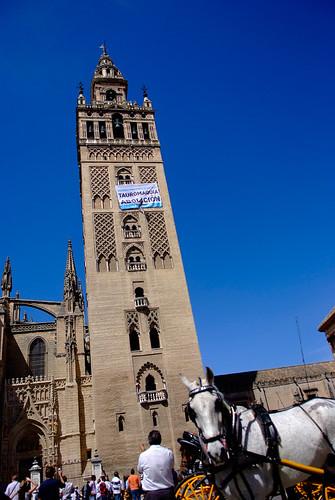 24/04/2009 - Sevilla - La Giralda - Tauromaquia Abolicion