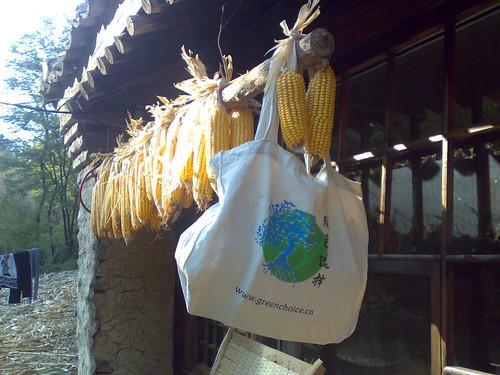 Global Village farming + branding