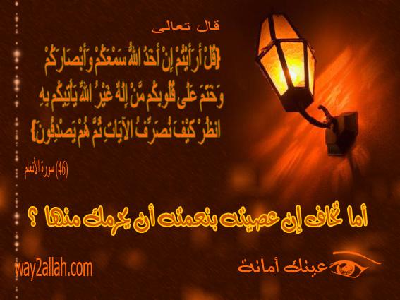 3488913959_9e33752ee2_o.jpg