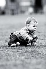 Rufford 2 (M*I*K*E) Tags: park nottingham uk light boy portrait england baby mike grass canon photography child natural sutton ashfield rufford nottinghamshire swanwick 40d