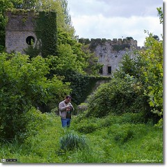 Abandoned & Over Grown - Donadea Castle