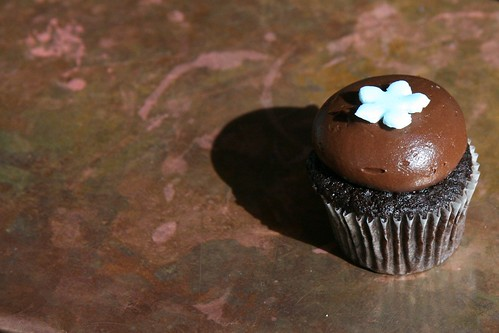 Chocolate mini cupcake, alone by Nicole Lee from Flickr