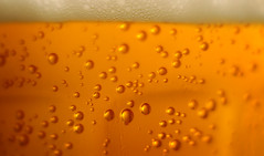 To Beer or no the Beer? (noamgalai) Tags: macro beer yellow closeup drunk heineken photo drops drink drinking picture bubbles corona photograph alcohol foam bubble alcoholic budweiser goldstar carlsberg    noamg    noamgalai   sitemisc siteabstract druft