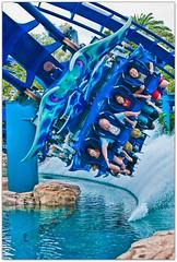 Manta (kevkev44) Tags: ride bm rollercoaster seaworld coaster manta mantaray seaworldorlando flyingcoaster newcoaster bolligermallibard