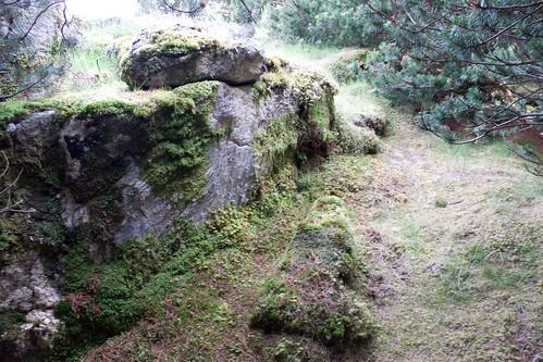Rocking stone & guardian