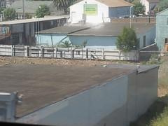 Sestor WKT over SHAK NBSK (MOB IN DA BAY) Tags: graffiti beef shak wkt sestor nbsk