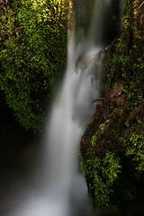 water in the morninglight (seeker0204) Tags: nature water forest waterfall moss wasser wasserfall natur bach grün wald moos langzeitbelichtung longtimeexposure bachlauf waldbach seeker0204