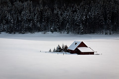 Snowed In (andywon) Tags: trees winter house snow nature germany landscape deutschland loneliness lonely plains platte schwarzwald blackforest snowbound badenwrttemberg explored