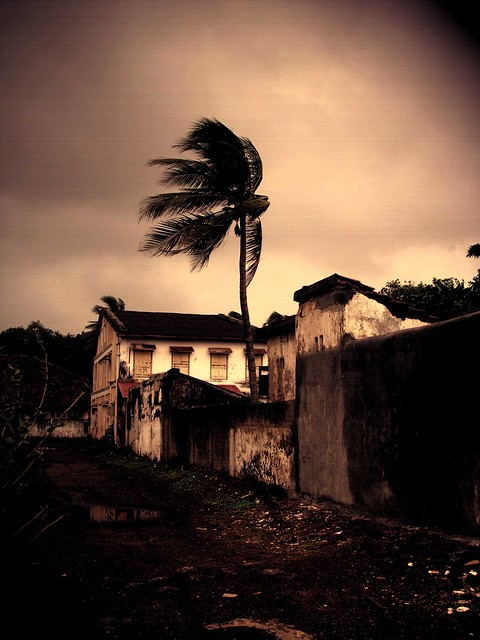 Windswept Ruins.