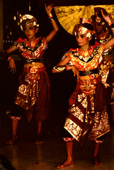 Bali Dancers / Balinese Dance - Poise (Dominic's pics) Tags: poise balinesedance event balinese dance bali 1998 seriousexpression dancers performer hindu culture agama dharma indonesia agamahindudharma scan slide transparency canoscan 8800f reducenoise noise filter gold yellow orange costume traditional golden
