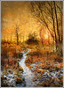 White way (Jean-Michel Priaux) Tags: autumn winter sunset orange sun sunlight snow france cold tree art texture ice nature illustration forest photoshop automne painting way landscape nikon track hiver dream peinture dreaming alsace textured anotherworld savage ried d90 rossfeld baggerloch priaux mywinners abigfave anawesomeshot aplusphoto citrit benfeld theunforgettablepictures vosplusbellesphotos kogenheim imagicland sailsevenseas