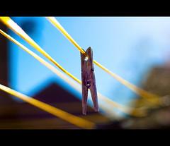 ..: Hung Out To Dry :.. (©Komatoes) Tags: wood yellow metal garden 50mm nikon pin bokeh sunny line explore devon 94 f18 clothespeg washingline d40