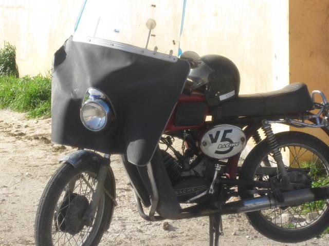 guarda-luso-Torreira 455