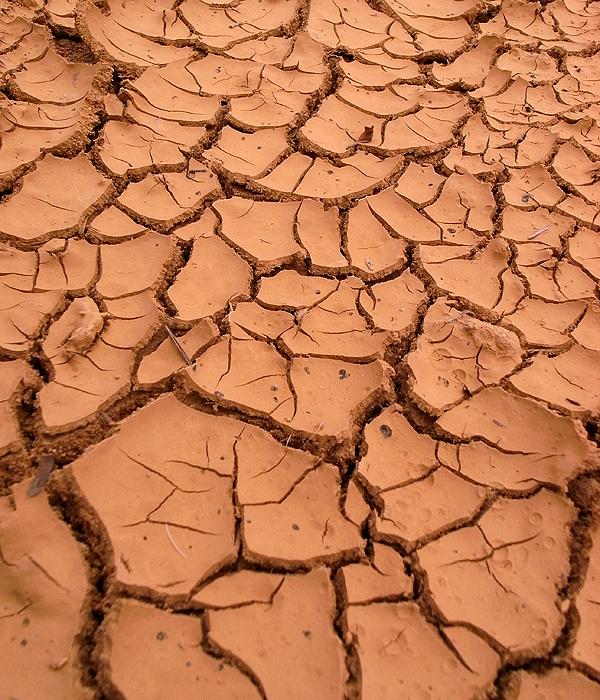 土のひびわれ