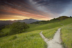Fork In The Road - Walnut Creek, California (PatrickSmithPhotography) Tags: california travel wallpaper sky usa cloud nature grass self sunrise canon landscape interestingness oak lafayette path hill dirt bayarea 5d canon5d eastbay diablo walnutcreek mtdiablo concord oaktree pleasanthill mkii srf goldenstate 1740l baytree contracosta realization intestingness contracostacounty 5dmkii