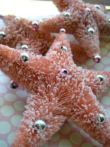 Sugary Sea Stars!
