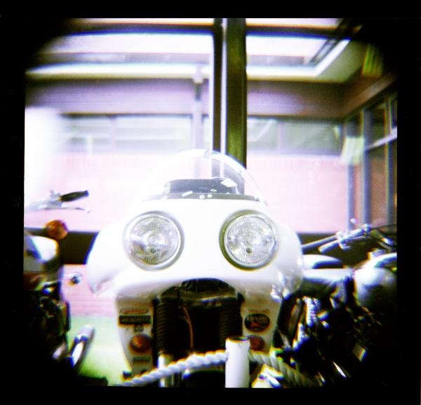 Frog Bike!