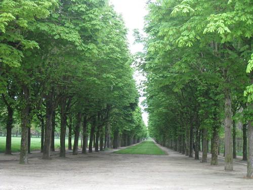 Royal Château de Fontainebleau & Grounds