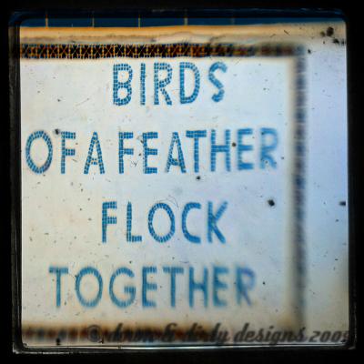 let's flock
