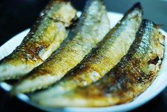 Pacific saury  (MelindaChan ^..^) Tags: fish fry pacific cook mel pan melinda saury panfried  pacificsaury kitechen  chanmelmel  melindachan
