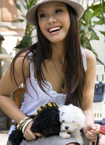 Chó TOY POODLE lông dẹp dáng chuẩn từ Thái về giá mềm