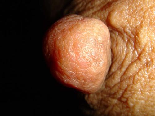 daily big boobs natural tits pics: bigtits