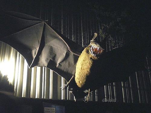 Nacht der Museen Ffm 2009 (06)