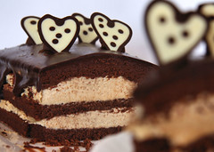 Chocolate cream cake 0731 R