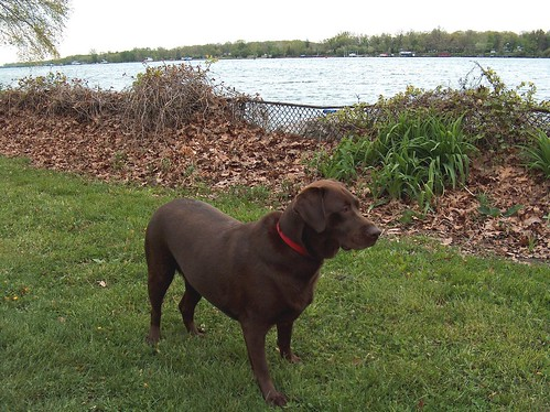 Jenny in the park, Trenton Michigan