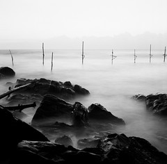 Fishing stilts, Sri Lanka. (ndnbrunei) Tags: sunset blackandwhite bw 120 6x6 tlr film beach rollei mediumformat square kodak bn mf srilanka kodakbw400cn unawatuna xenar rolleicord bw400cn classicblackwhite 25faves autaut rolleigallery ndnbrunei 50yearoldcamera ilovemyrolleicord fishingstilts