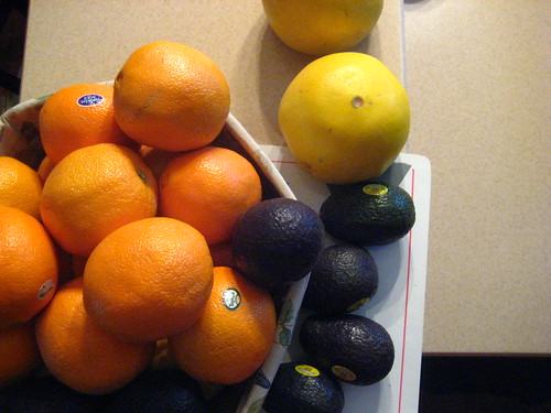 oranges, avocados, and pomelos.