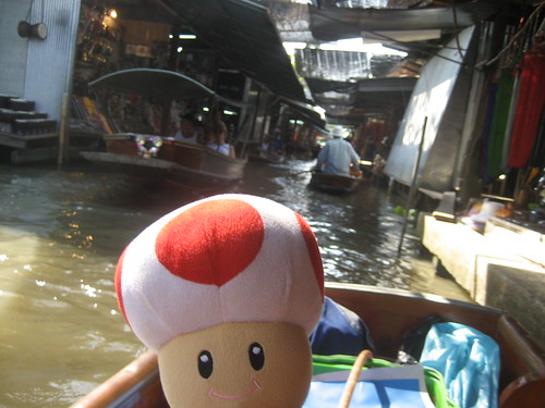 Toad at Floating Market