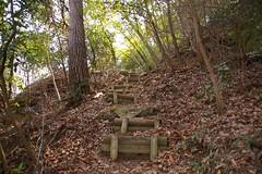 地蔵岩ヤッホー公園 #16
