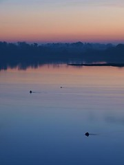 Deben 135 Waldringfield (barrycross) Tags: uk reflection water sunrise dawn boat suffolk spring flickr yacht calm bouy equinox dinghy moorings riverdeben buoyant barrycross easternlightphotography barrycrossphotography wwwbarrycrossphotographycom