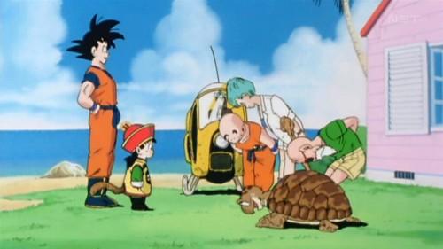 Dragon Ball Kai Kame House